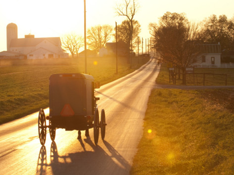 peter-ptschelinzew-horse-and-buggy-in-amish-community