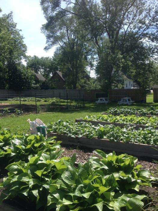Merrill Community Garden
