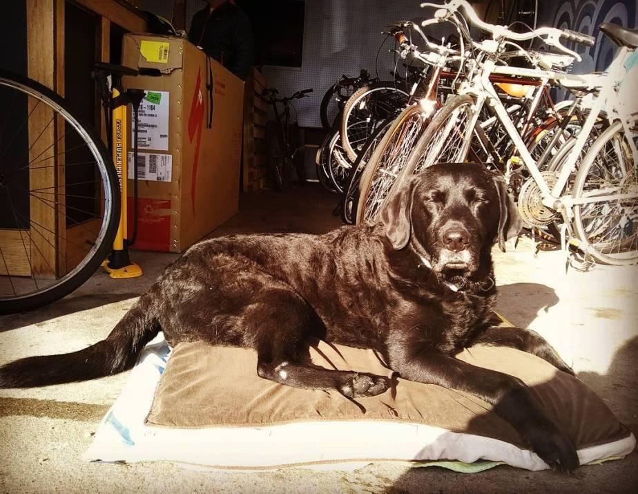 bb's First Bike Tour:Planning